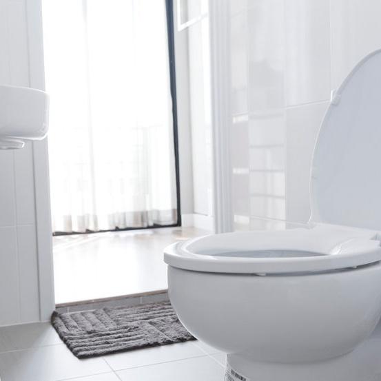 working toilet