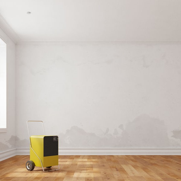 dehumidifier in water damaged room