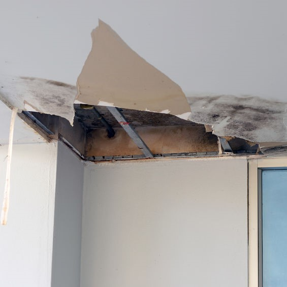 damaged ceiling due to water damage